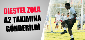 distel_zola_gidici_mi_h2880